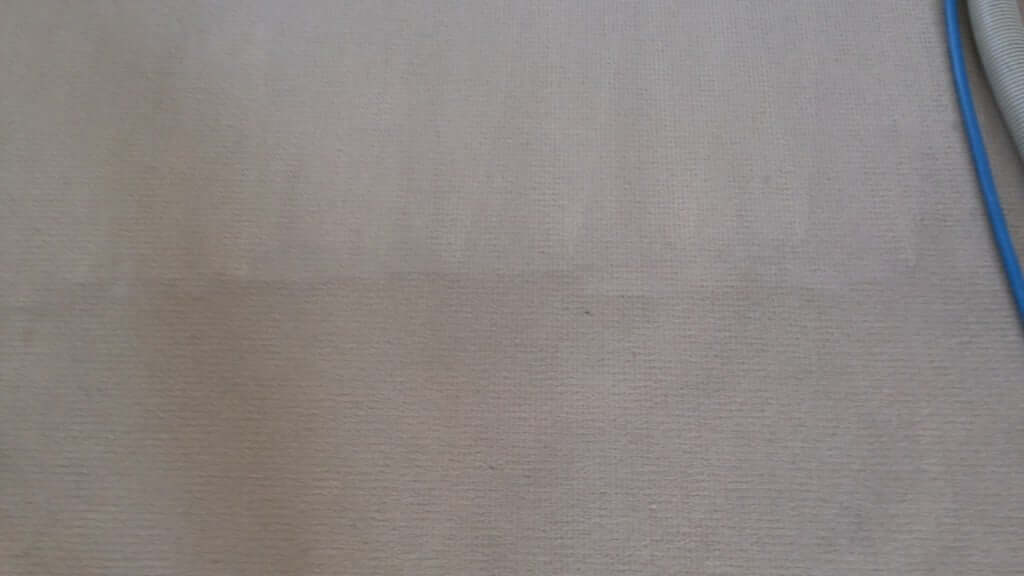 Aussie Budget Carpet Cleaning Services - Carpet on Floor